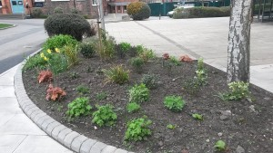 Aspects Horticultural Services Ltd